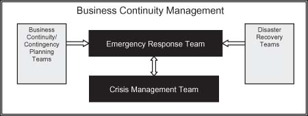 Business Continuity Management Structure Figure 1